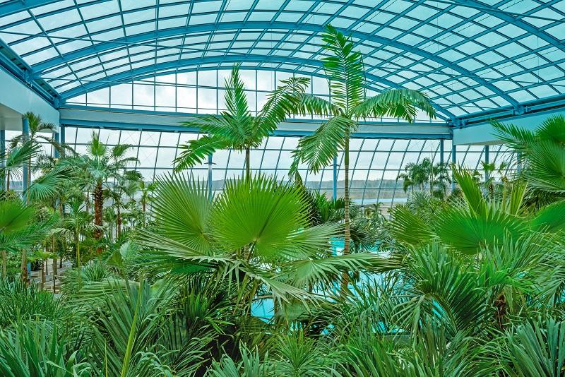 wodny świat - największy aquapark w Polsce - Suntago Wręcza Mszczonów Park of Poland Opinie cennik