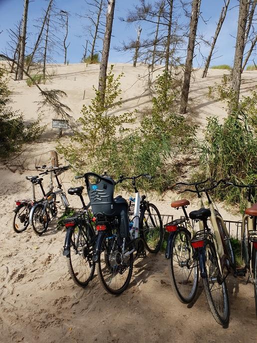 wycieczka rowerowa z dzieckiem na wydmy Łeba opinie ceny wypożyczenia
