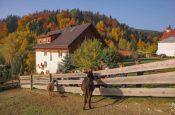 hotele przyjazne rodzinie Góry Stołowe