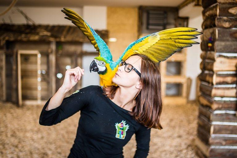 zakopane atrakcje dla dzieci papugarnia egzotyczne zakopane rodzinne atrakcje opinie ceny