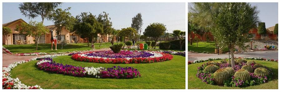 zdjęcia pokoje hotel jungle aquapark hurghada egipt opinie