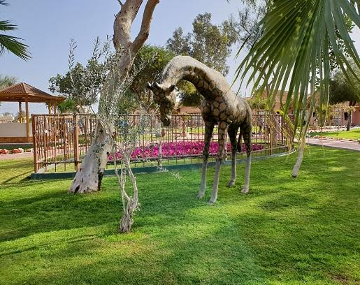 zieleń w hotelu jungle aquapark hurghada opinie