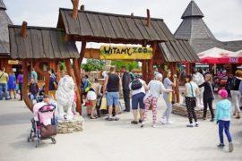 zoo boryszew safari cennik atrakcje opinie
