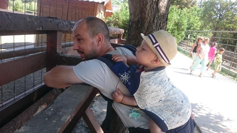 atrakcje dla dzieci ZOO Konstanca Rumunia