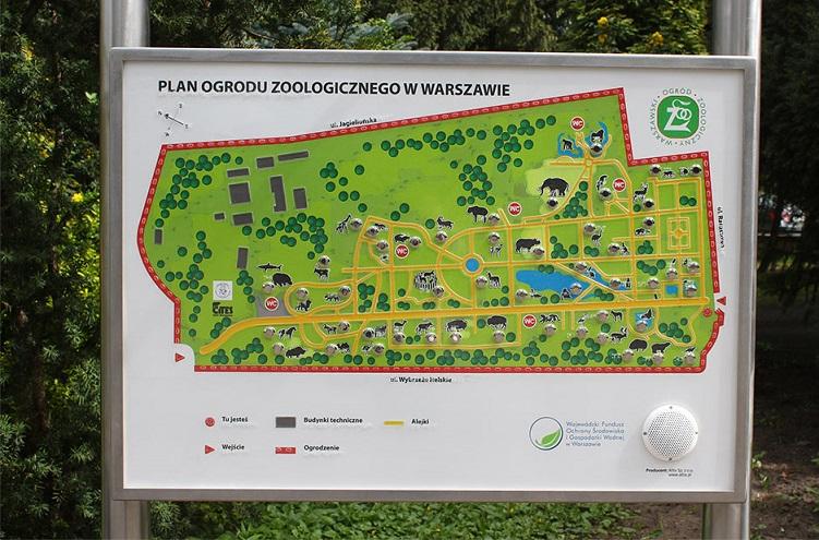 Warszawskie zoo opinie atrakcje godziny otwarcia